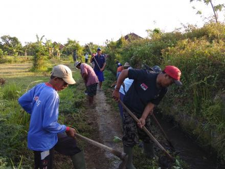 DD tahap III Cair, Subak Kaliculuk Bersihkan Lokasi Proyek